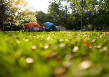 The Essential Camping Trip Guide 2021